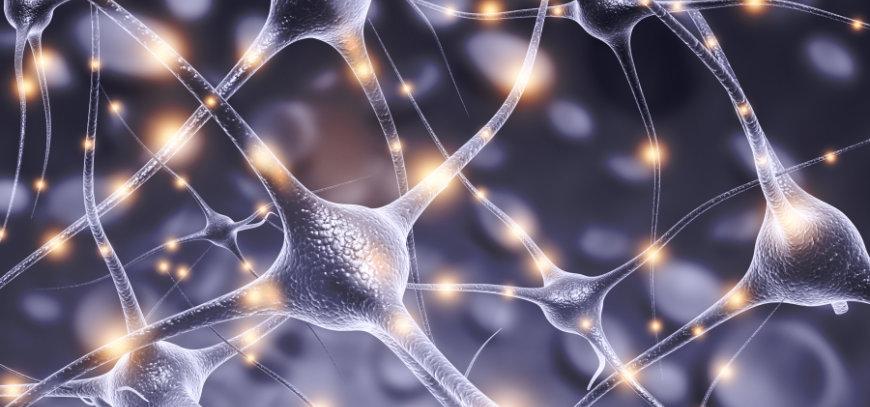 Neuromodulación en Málaga